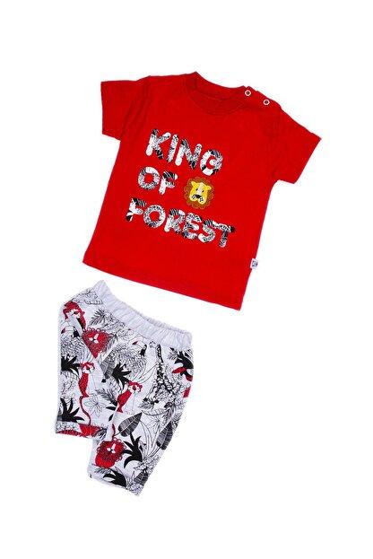anılço Erkek Bebek Kırmızı King Of Forest %100 Pamuklu 2'li Takım