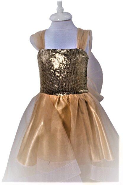CHIC Bebe Kız Çocuk Gold Organze Abiye Elbise