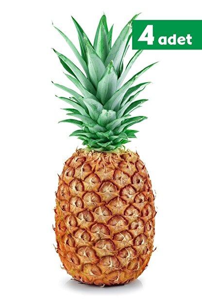 TROPİK SEPETİ Ananas - 4 Adet