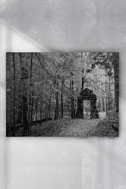 Postermanya Siyah Beyaz Doğa Manzara Poster 3(90x130cm)