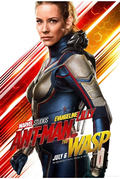 AKTÜEL POSTER Ant-man And The Wasp (2018) 35 X 50 Poster Honeyball