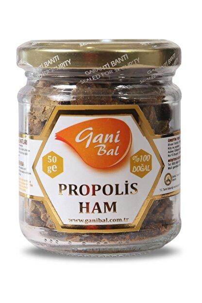 GANİBAL Ham Propolis - Işlem Görmemiş Halde 50 Gr