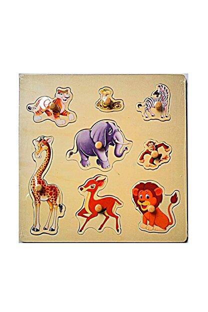 Hi-Q Toys Hayvanları Tanıyalım Ahşap Tutmalı Yapboz /