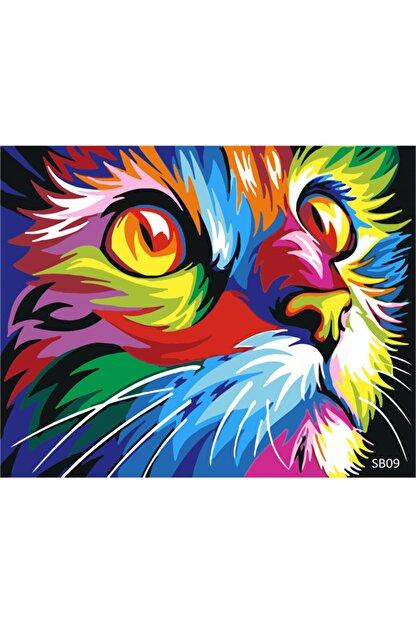 PlusHobby Sb09/kedi Figurü-sayılarla Boyama Seti 40x50cm Tuval