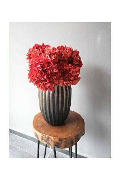 Kuru Çiçek Deposu Solmayan Gerçek Ortanca Buketi Kırmızı 4-5 Adet , Kuru Çiçek