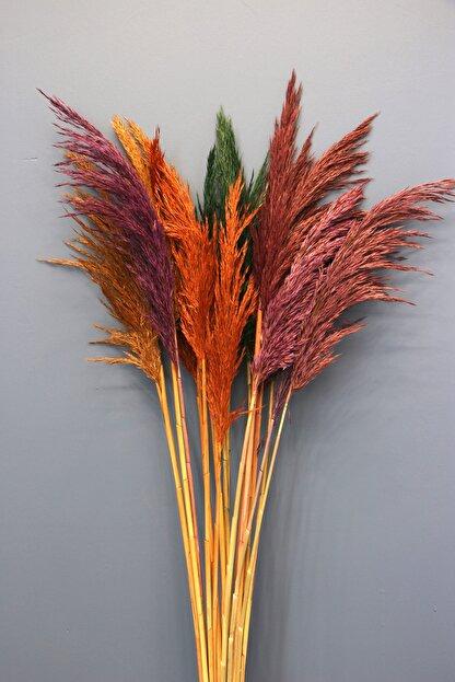 Yapay Çiçek Deposu Şoklanmış 15li Pampas Otu Karışık Renk 100 Cm