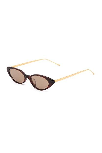 Retro Kadın Kahverengi Güneş Gözlüğü Wıld X 02