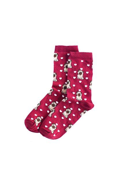 UNLIMITED LEGWEAR Pug Köpek Desenli Bordo Kadın Çorabı