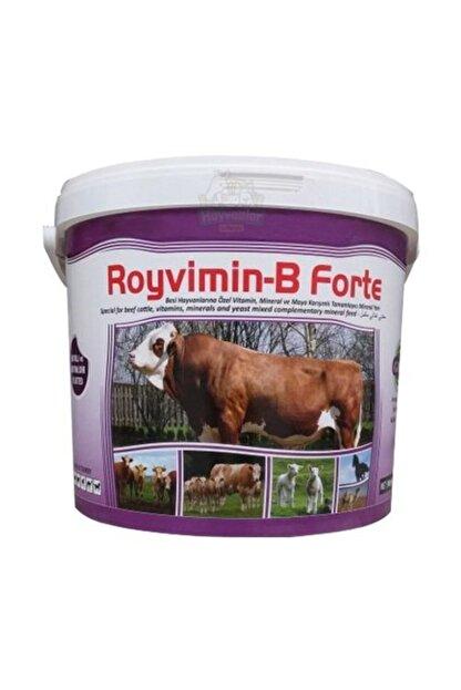 Royal Royvimin B Forte Toz Besi Hayvanı Yem Katkısı 25 kg