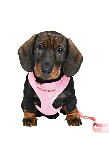Trixie Yavru Köpek Göğüs. Tasma Ve Kayışı ,23-34cm/2m/10mm