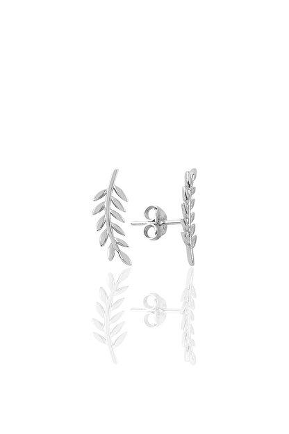 Söğütlü Silver Gümüş Yaprak Modeli Küpe