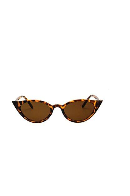 Toz Vintage Leopar Vintage&retro Kedi Güneş Gözlük