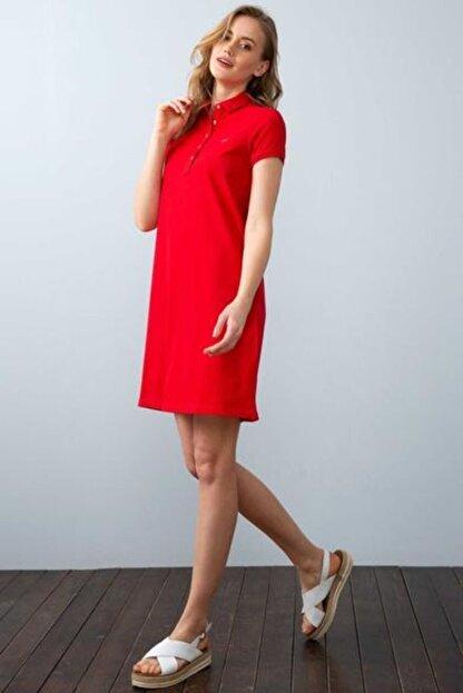 US Polo Assn Kadın Kırmızı Örme Elbise 949478 Mıso 030