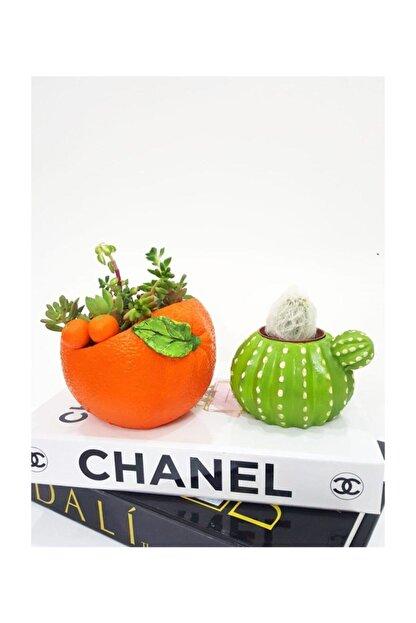 3D Dekoratif 2'li Set Portakal Ve Kaktüs Tasarımlı Sukulent Saksı