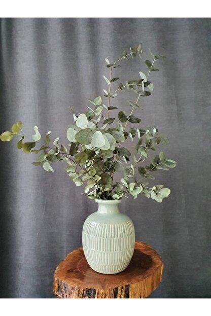 Decolass Kuru Çiçek Şoklanmış Okaliptus Demeti Yeşil (50 cm)