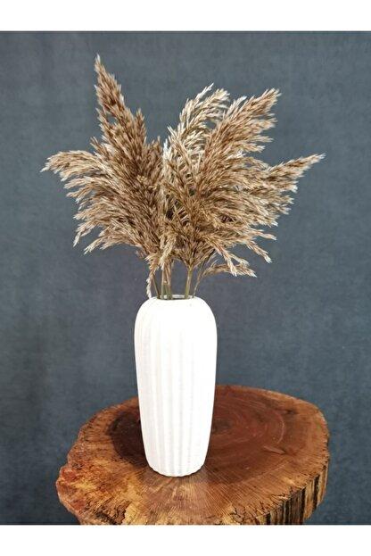 Decolass Kuru Çiçek Şoklanmış 10'lu Pampas Otu Natural 60 cm