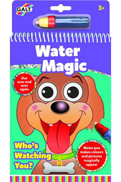 Galt Water Magic Sihirli Boyama Kitap Seni Kim Izliyor?