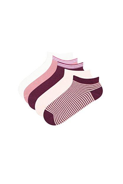 Penti Kadın Pembe - Çok Renkli Çember 5Li Patik Çorap