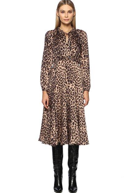 Network Kadın Midi Boy Camel Siyah Leopar Desenli Elbise 1070792