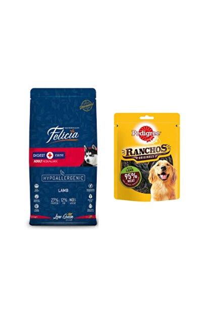 Felicia Orta Büyük Irk Yetişkin  Tahıllı Kuzulu Pirinçli Köpek Maması 3 kg+Kuzu Etli Köpek Ödül Maması 70 gr