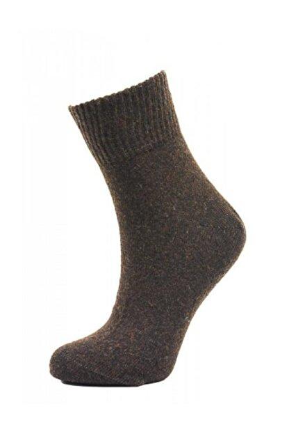 BORN Kadın Yünlü Kısa Soket Çorabı | Bo29401