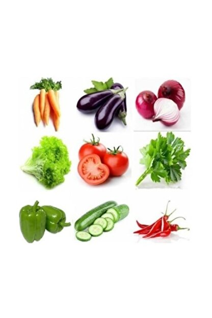 3M Çeşitli Sebze 9 Farklı Çeşit Sebze Tohumu 60+ Tohum