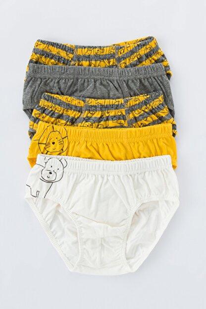 Penti Çok Renkli Erkek Çocuk Animals 5li Slip Külot