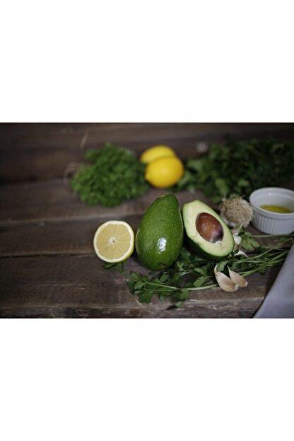 bibakmışsınkapında Avokado 5 Adet