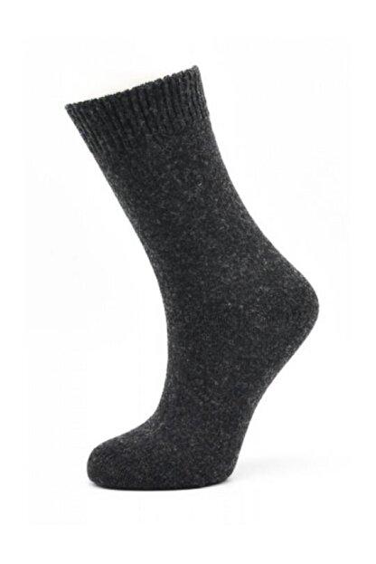Style Kadın Yün Soket Çorabı | Sb4643