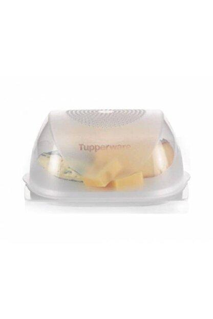 Tupperware Orta Boy Peynir Dünyası