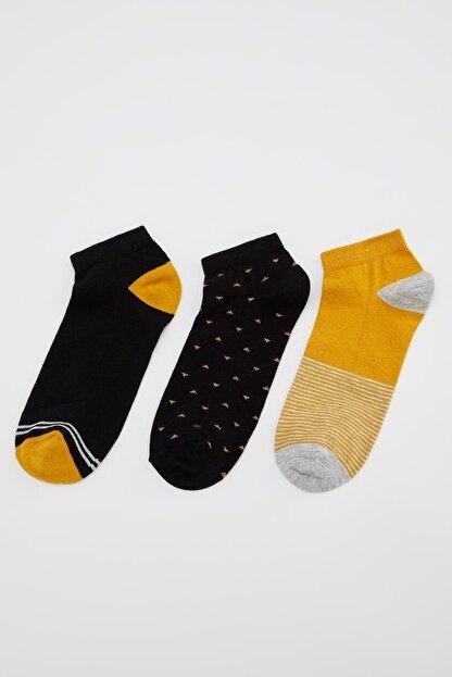 Defacto Erkek Sarı Çizgi Desenli Patik Çorap 3'lü