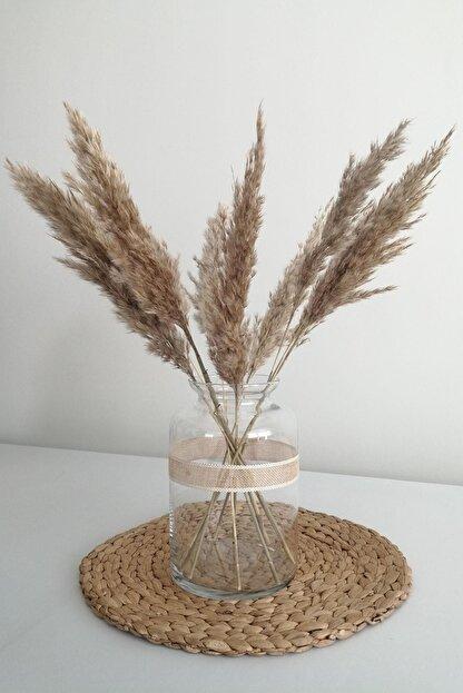 Kuru Çiçek Deposu Kuru Çiçek Pampas Küçük 7'li Demet 100 Cm (natural) 20420201280