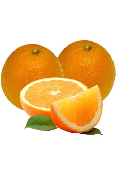 antalyasebzemeyve Portakal Meyvelik 1 Kg