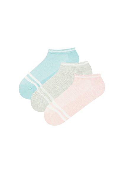 Penti Kadın Pembe Mavi Soft Dokulu Patik Çorap 3'lü