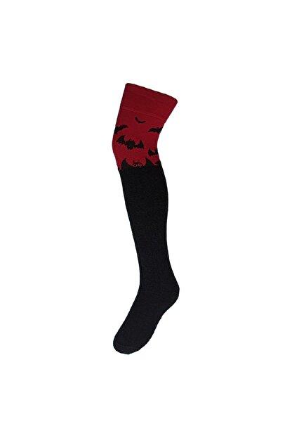 Adel Yarasa Desenli Diz Üstü Çorap