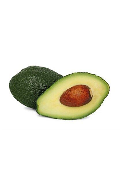 Yenir tarım ürünleri Avokado (1 ADET)