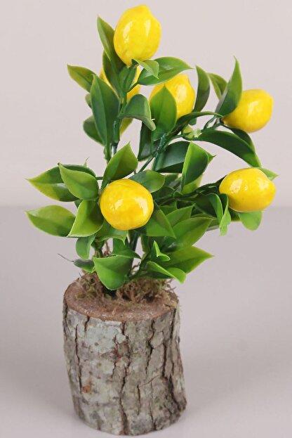 Nova Casa Kütükte Limon Ağacı