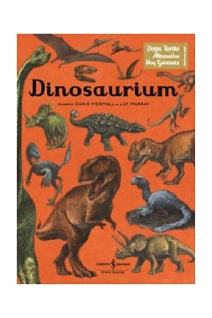 İş Bankası Kültür Yayınları Dinosaurium Lily Murray
