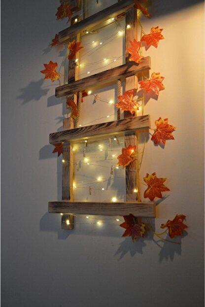 HayalAvm Doğal Ahşap Işıklı Dekoratif Sonbahar Konseptli 3 Çerçeveli Halatlı 5 M Günışığı Led 10 Mandallı