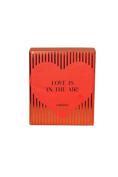 CAELUM Love & Love Limited Edition Kolonya Seti