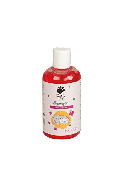 Pet Love Çilek Özlü Kedi Ve Köpek Şampuanı 250 ml