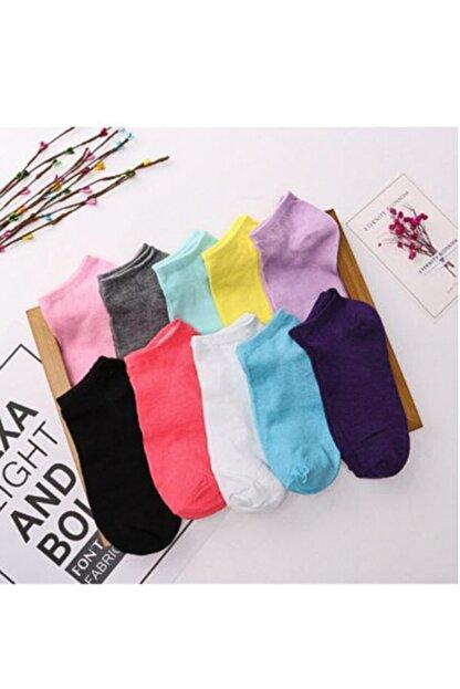Pirayem Piraye'm 12'li Renkli Kadın Patik Çorap