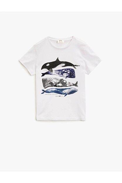 Koton Koton Erkek Çocuk T-shirt Beyaz