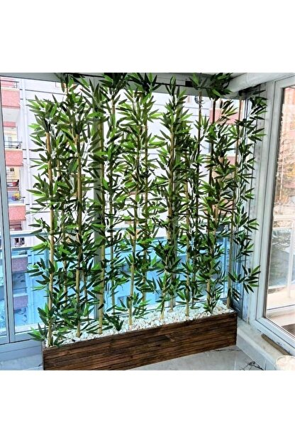 Bambu 2 Metre Boyunda Ahşap Saksıda Ağaç