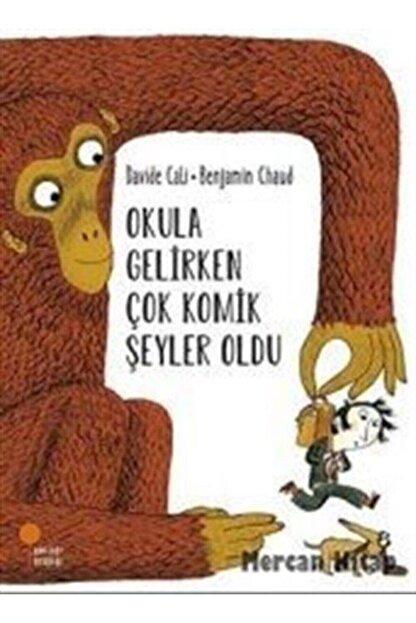 Günışığı Kitaplığı Okula Gelirken Çok Komik Şeyler Oldu-okuldaki Hayalci