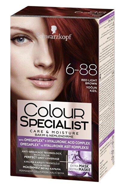 Colour Specialist 6-68 Kızıl Kahve Saç Boyası