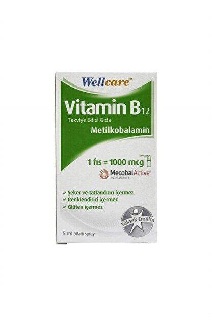 Wellcare Vitamin B12 1000 Mcg Sprey 5 ml