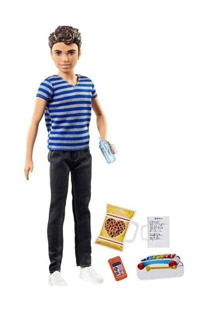 Barbie Bebek Bakıcısı Serisi Erkek Bebek ve Aksesuarları FNP43-FHY89