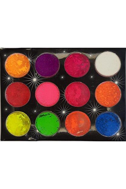 DIAMOND PROFESSIONAL Tırnak Tasarım Pigment Toz 1 Paket (12renk)