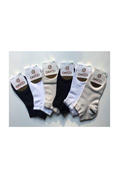 DAYCO Kadın Renkli 6'lı Patik Çorap